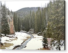 Acrylic Print featuring the photograph Jemez Mountains Forest Stream by Andrea Hazel Ihlefeld