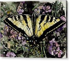 Jennifer's Delight Acrylic Print by Laneea Tolley