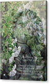 Jeremiah 29 - 11 Scriptural Art Acrylic Print