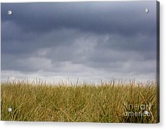 Acrylic Print featuring the photograph Remember When The Days Were Long by Dana DiPasquale