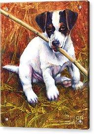 Jesse James Acrylic Print by Pat Burns
