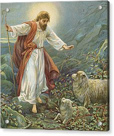 Jesus Christ The Tender Shepherd Acrylic Print by Ambrose Dudley