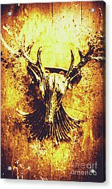 Jewel Deer Head Art Acrylic Print by Jorgo Photography - Wall Art Gallery
