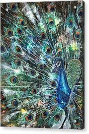Jeweled Acrylic Print by Patricia Allingham Carlson