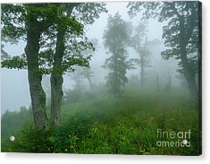 Acrylic Print featuring the photograph Jewell Hollow Overlook by Thomas R Fletcher