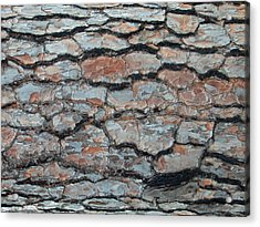 Jigsaw - Pine Tree Bark Acrylic Print