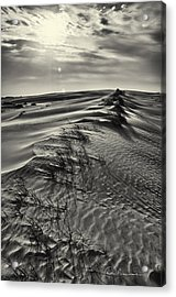 Jockey's Ridge Texture 7116 Acrylic Print by Dan Beauvais