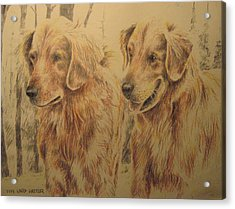 Joe's Dogs Acrylic Print
