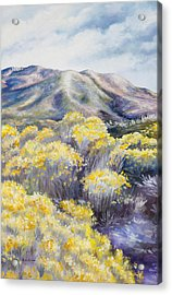 John Day Valley II  Acrylic Print