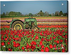 Acrylic Print featuring the photograph John Deere by Craig Leaper