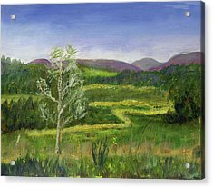 Pete's Riparian Forrest Buffer Acrylic Print