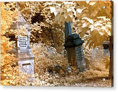 Autumnal Walk At Abney Park Cemetery Acrylic Print by Helga Novelli