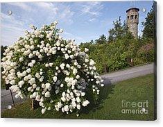 John Wingate Weeks Estate - Lancaster New Hampshire Acrylic Print
