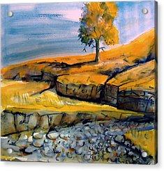 Johnny Creek Acrylic Print by Steven Holder