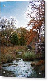 Johnson Creek  Ingram Tx  1349 Acrylic Print