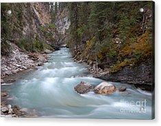 Johnston Canyon In Banff National Park Acrylic Print by RicardMN Photography