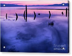 Jojkjk Acrylic Print by Gary Whitton
