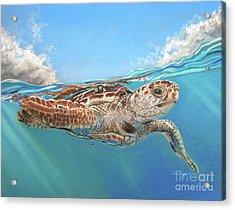 Jonah Acrylic Print by Deb LaFogg-Docherty