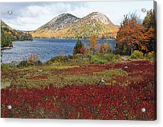 Jordan Pond And The Bubbles Acrylic Print by George Oze