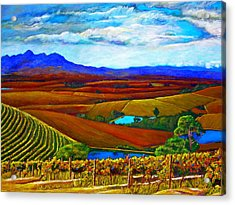 Jordan Vineyard Acrylic Print by Michael Durst