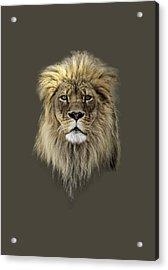 Joshua T-shirt Color Acrylic Print by Everet Regal
