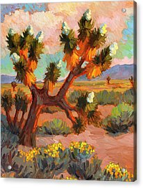 Joshua Tree Acrylic Print