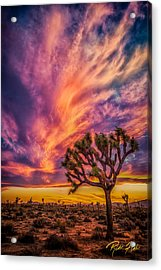 Joshua Tree In The Glowing Swirls Acrylic Print