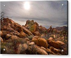 Joshua Tree National Monument Acrylic Print by Kevin Felts