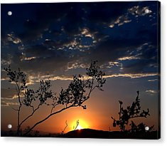 Joshua Tree Sunset Acrylic Print