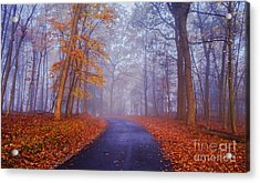Acrylic Print featuring the photograph Journey Continues by Rima Biswas
