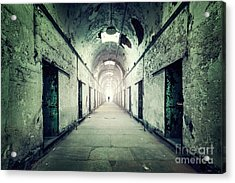 Journey To The Light Acrylic Print by Evelina Kremsdorf