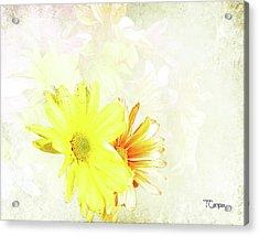 Joy 2 Acrylic Print