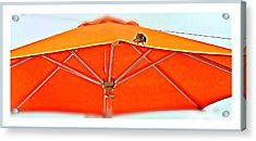 Acrylic Print featuring the digital art Joy On An Umbrella by Mindy Newman