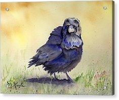 Judy's Raven Acrylic Print