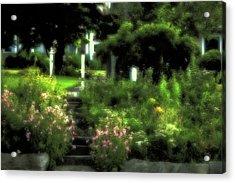 Acrylic Print featuring the photograph July Garden by Carol Kinkead