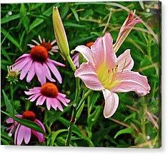 July Lily #10 Acrylic Print