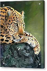 Acrylic Print featuring the painting Jumanji by Sherry Shipley