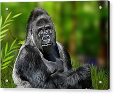 Jumbo Acrylic Print by Julie L Hoddinott