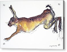 Jumping Hare Acrylic Print by Lucy Willis