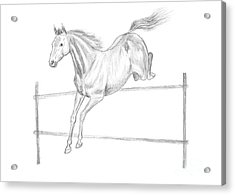Jumping Horse Drawing Acrylic Print