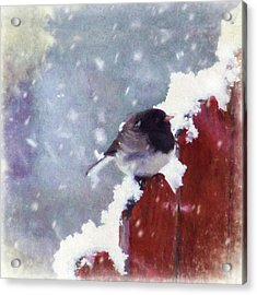 Acrylic Print featuring the digital art Junco In The Snow, Square by Christina Lihani