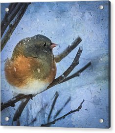 Acrylic Print featuring the digital art Junco On Winter Day by Christina Lihani