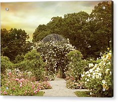 June Bloom Acrylic Print by Jessica Jenney