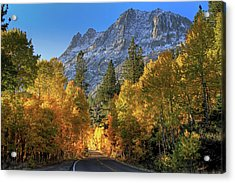 June Lake Loop Acrylic Print by Donna Kennedy