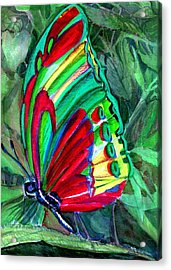 Jungle Butterfly Acrylic Print by Mindy Newman