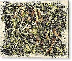 Jungle George Acrylic Print