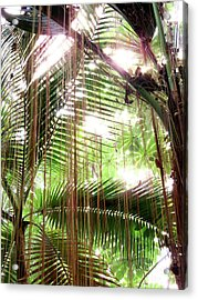 Jungle In There Acrylic Print