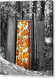 Jungle Shower Acrylic Print by RC Photography