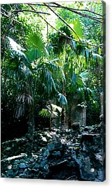 Jungle Sun  Acrylic Print