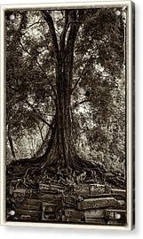 Jungle Tree Acrylic Print